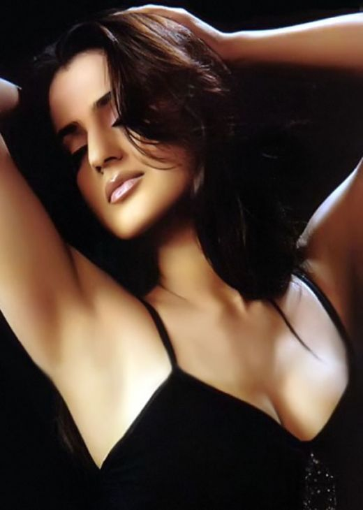 Hot amisha patel cleavage